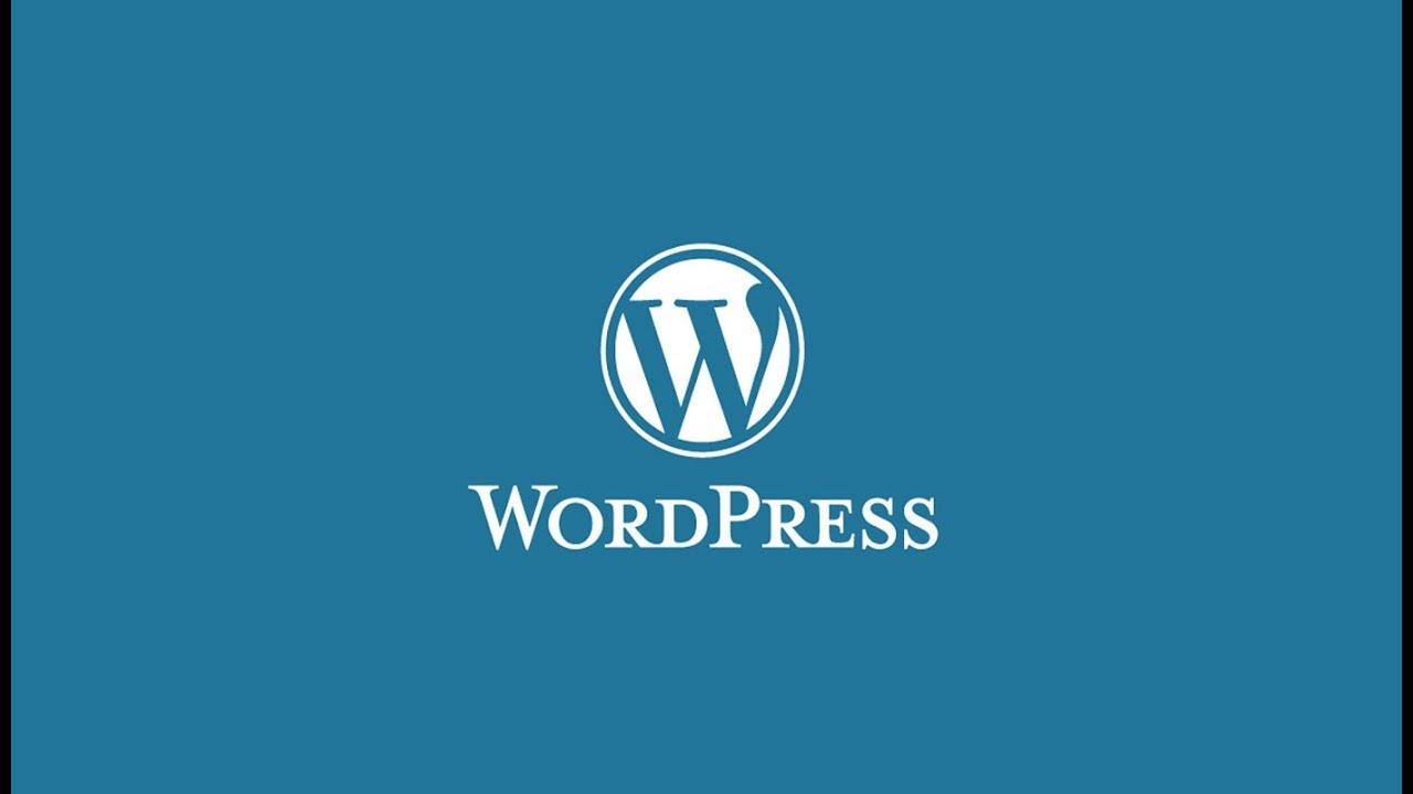 En Popüler 10 WordPress Temaları